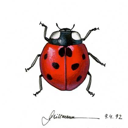 The Art Of Thomas Geissmann - Animals