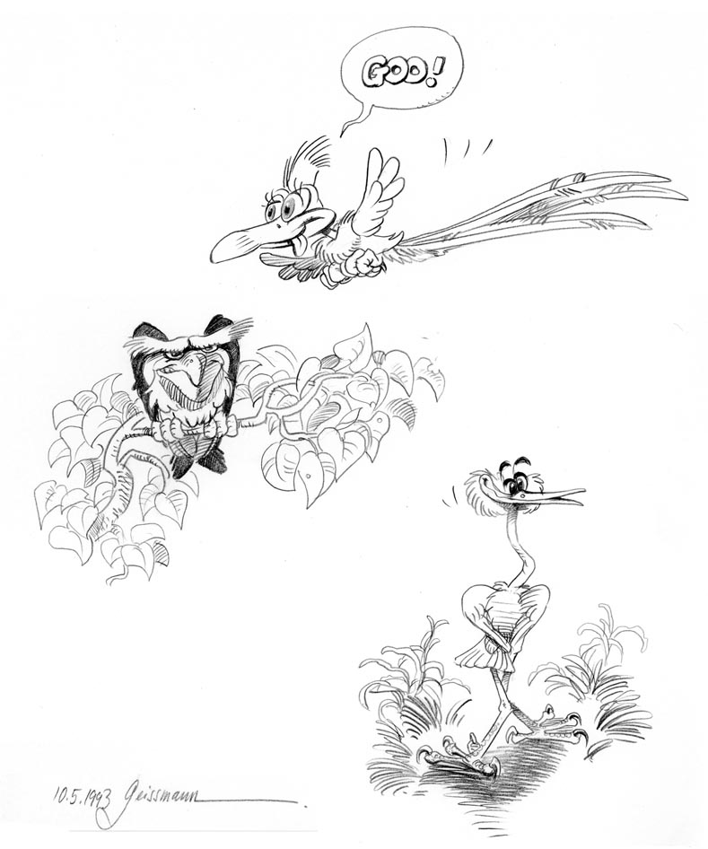 sketches of birds. Pencil drawing.
